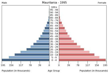 pyramid1995